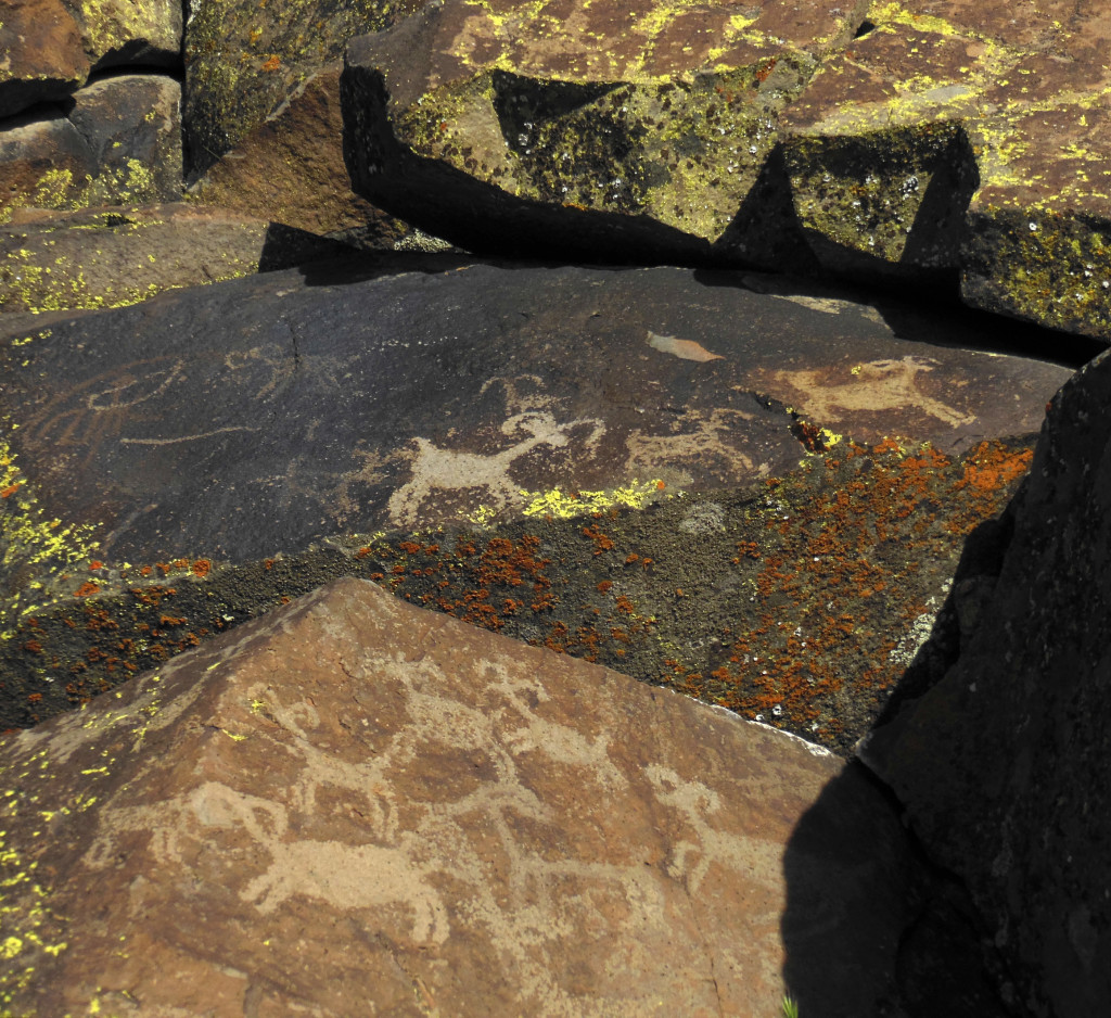 View of a herd of sheep carved in the rock at Little Petroglyph Canyon, Ridgecrest, California.